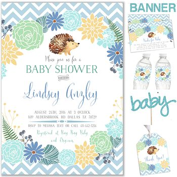 Baby Hedgehog Baby shower party pack for boy PK1256