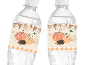 Little Pumpkin Matching water bottle label WL2526/n